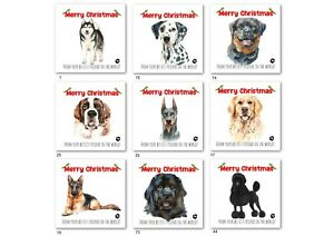 CHRISTMAS CARD FROM THE DOG - DALMATIAN,NEWFOUNDLAND,GERMAN SHEPHERD, LABRADOR