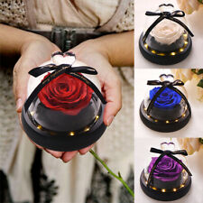 Enchanted Forever Rose Flower LED In Glass Dome For Birthday Christmas Gifts