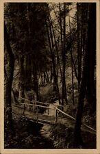 Königsfeld Schwarzwald Postkarte ~1920/30 Waldpartie am Erlenbach ungelaufen