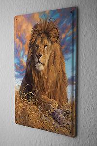 Decorative Tin Sign Vet Practice Lion Metal Plate 8X12