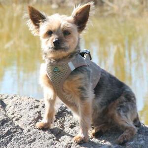 American River Fossil Brown Dog Harness Ultra Choke-Free Mesh  -  XXS-3XL