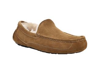 Ugg Australia Mens Chestnut Beige Ascot Suede Slippers
