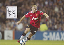 PAUL SCHOLES Signed 12x8 Photo Display MANCHESTER UNITED & ENGLAND  COA
