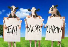 """Cows With Signs """"Eat More Chikin"""" Funny Poster Art Home Office Decoration"""