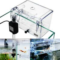 Aquarium Transparent House Incubator Box for Isolation Hatchery Cage External