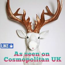 LARGE Unique decoration Stag Head Taxidermy Deer 'Bold' - Copper OR Gold Antlers