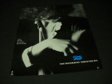 Waterboys say This Is The Sea 1985 Promo Display Ad