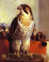 """perfect 24x36 oil painting handpainted on canvas """"The Falcon""""@12738"""