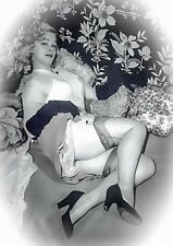 Vintage glamour nylons stockings garters girdles heels photos images on cd 1