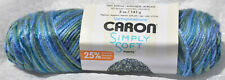 Caron Simply Soft Paints Yarn in SPRING BROOK #21003 - NIP & Non-Smoking Home
