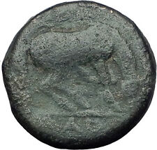 LARISSA Thessaly Genuine 360BC Authentic Ancient Greek Coin NYMPH & HORSE i63094