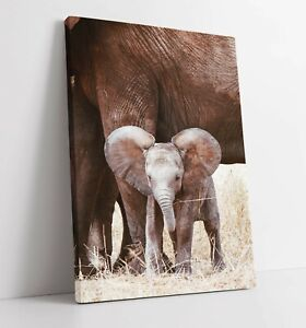 BABY ELEPHANT LARGE CANVAS WALL ART FLOAT EFFECT/FRAME/PICTURE/POSTER PRINT-GREY