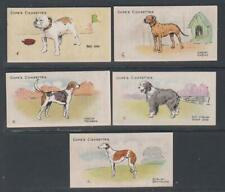 More details for cigarette cards cope 1912 dogs of the world - (5 cards) 1-5