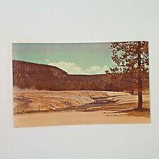 Vintage 1959 Souvenir Color Postcard Iron Creek Yellowstone Firehole River Scene