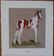 Ann Hanson Standin' Tall  Limited Edition Fine Art Print Western Animals Foal AP