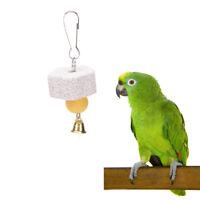 2 X Papagei Mund Schleifstein Sittich Nymphensittich Wellensittich Vogel  VE
