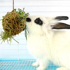 Round Pet Toy Grass Dispenser Ball Hamster Rabbit Play Toy Grass Frame Ball