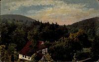 Teutoburger Wald alte Color Ansichtskarte ~1910 Malerisches Tal mit Fachwerkhaus