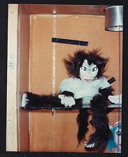 Vintage Photograph Maria - Puppet From Play Cats Sitting on Shelf