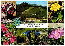 Austria Postcard Blumengrube Vom Semmering Flowers Unposted