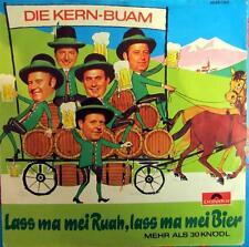 Single / DIE KERN BUAM / 1972 / RARITÄT / AUSTRIA /