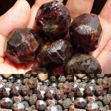 100g DIY Natural Red Garnet Quartz Crystal Healing Stones Reiki Specimens Gift