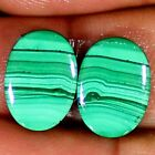 Natural Green MALACHITE Pair Cabochon 20.35 Cts Oval Shape 11x15x4 mm Gemstones