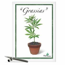 "Jumbo Funny Thank You Card - 'Grassias' with Envelope 8.5""x11"""