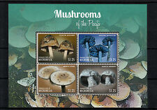Micronesia 2013 MNH Mushrooms of Pacific I 4v M/S Fungi Nature Stamps