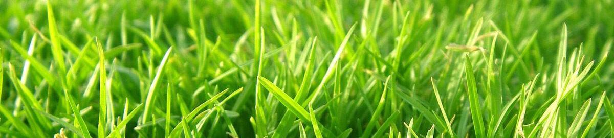 hq lawn mower blades