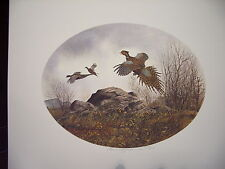 David Hagerbaumer  sporting artist  hand signed limited edition print Pheasants