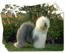 Old English Sheepdog Picture Placemats in Gift Box, AD-OES1P