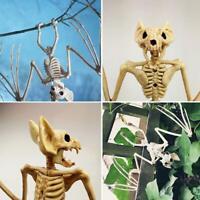 Creepy Skeleton Bat Bones Halloween Decor Scene Party Scary Decoration Halloween