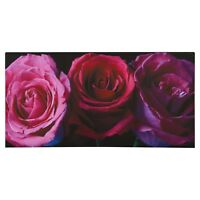 Plum Purple Aubergine Pink Rose Flower Canvas Wall Art Picture Large 80 x 40cm