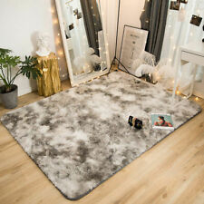 Shaggy Area Rug Fluffy Rugs Anti-Skid Dining Room Carpet Floor Mat Home Bedroom