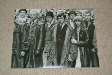 PHIL DANIELS signed autograph 8x10 (20x25cm) In Person QUADROPHENIA