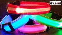 "BRIGHT LED Flashing, USB RECHARGEABLE LIGHT UP Dog Collar-"" UK SUPPLIER"""