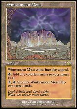 Wintermoon Mesa - LP - Prophecy MTG Magic Cards Land Rare