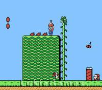 Super Mario Brothers 2 Rare NES Nintendo Game Bros II