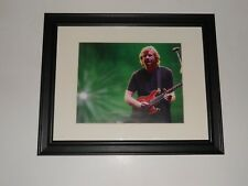 "Framed Phish on Stage Trey Anastasio 50th Birthday Green Background 14"" by 17"""