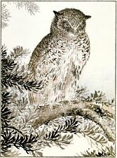 2 Japanese Woodblock Reproductions: Kashu: Eared Owl, Mallard: 2 Fine Art Prints
