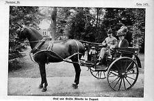 Graf und Gräfin Minotto im Dogcart Historical Memorabilia c.1912