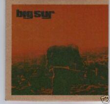 (D201) Big Sur, Desert Song - DJ CD