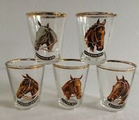 5 Vintage Shot Glass Horse Racing English Epsom Derby Winner Thoroughbred Bahram