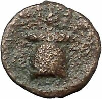 Syracuse in Sicily Early2ndCenBC Genuine Ancient Greek Coin Apollo Apex i46476
