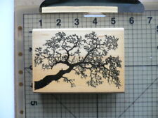 "Stampscapes Wood Mounted Rubber Stamp Detailed ""Oak Branch"" No:203G from 1997"