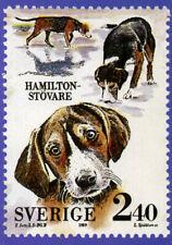 HAMILTONSTOVARE HAMILTON HOUND OFFICIAL SWEDISH STAMP 1989 DOG PICTURE POSTCARD