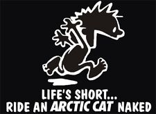 ARCTIC CAT naked DECAL trailer SNOWMOBILE sled ATV quad fender STICKER artic cat
