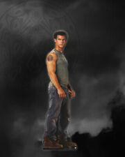Neca Twilight Eclips Jacob, Standee,