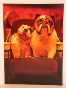 """""""Another Year, Another Magic Moment!"""" AVANTI Anniversary Card BULLDOGS at MOVIES"""